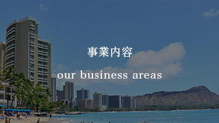 Our Business Areas