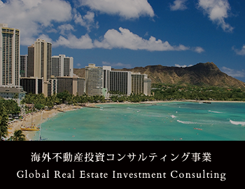 Global Real Estate Investment Consulting